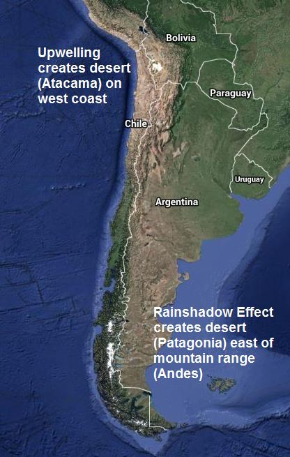 Patagnoia example